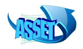 Asset2